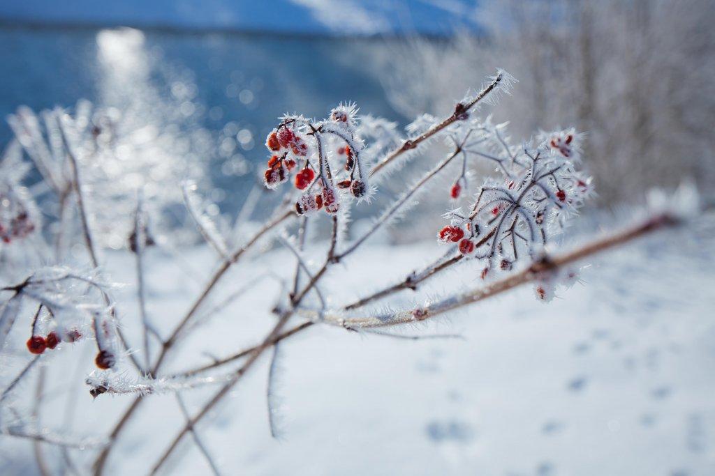 Winterurlaub Warth
