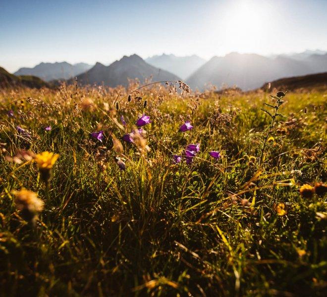 Sommerurlaub Alpen Tirol Arlberg
